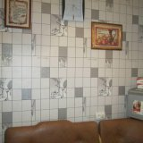 PHOTO-CRNGPRTK00010000-11446-0a3fc20f.jpg