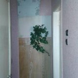 PHOTO-CRNGPRTK00010000-15207-53363182.jpg