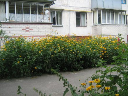 PHOTO-CRNGPRTK00010000-9515-42488191.jpg