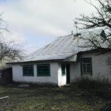 PHOTO-CRNGPRTK00010000-11770-375dcc5f.jpg
