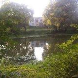 PHOTO-CRNGPRTK00010000-138305-51fe995a.jpg