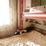 PHOTO-CRNGPRTK00010000-12774-2d96eeff.jpg