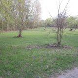 PHOTO-CRNGPRTK00010000-248247-3fb10f72.jpg