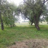 PHOTO-CRNGPRTK00010000-267440-c5e504b5.jpg