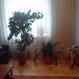 PHOTO-CRNGPRTK00010000-270955-07c1e44b.jpg