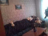 PHOTO-CRNGPRTK00010000-270955-2fb29944.jpg