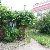 PHOTO-CRNGPRTK00010000-291789-235a97cd.jpg