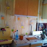 PHOTO-CRNGPRTK00010000-311116-5e161c29.jpg