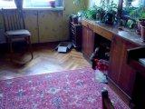 PHOTO-CRNGPRTK00010000-335706-5559bef6.jpg