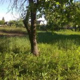 PHOTO-CRNGPRTK00010000-373945-f679b616.jpg