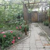 PHOTO-CRNGPRTK00010000-376344-b3865e47.jpg