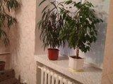 PHOTO-CRNGPRTK00010000-378699-98fa2386.jpg