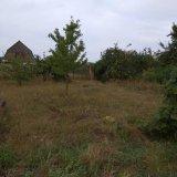 PHOTO-CRNGPRTK00010000-389466-1e105439.jpg