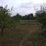 PHOTO-CRNGPRTK00010000-389466-56b3881d.jpg