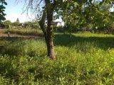PHOTO-CRNGPRTK00010000-390180-44f20181.jpg