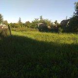 PHOTO-CRNGPRTK00010000-390180-6f5a77bb.jpg