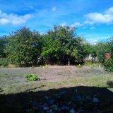 PHOTO-CRNGPRTK00010000-394686-78f1ad77.jpg