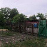 PHOTO-CRNGPRTK00010000-417755-b82e9139.jpg