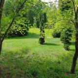 PHOTO-CRNGPRTK00010000-427978-a318f450.jpg