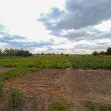 PHOTO-CRNGPRTK00010000-439799-83364c80.jpg