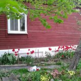 PHOTO-CRNGPRTK00010000-415674-6209f049.jpg