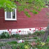 PHOTO-CRNGPRTK00010000-398565-c137595c.jpg