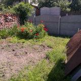 PHOTO-CRNGPRTK00010000-495849-b15e9398.jpg