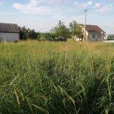 PHOTO-CRNGPRTK00010000-495923-21e24b1e.jpg
