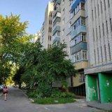 PHOTO-CRNGPRTK00010000-495959-56b5a90b.jpg