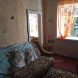 PHOTO-CRNGPRTK00010000-496067-d54d7c5a.jpg
