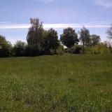 PHOTO-CRNGPRTK00010000-496228-509406ba.jpg