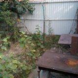 PHOTO-CRNGPRTK00010000-498431-d5d62e9f.jpg