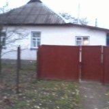 PHOTO-CRNGPRTK00010000-516770-fa9c6050.jpg